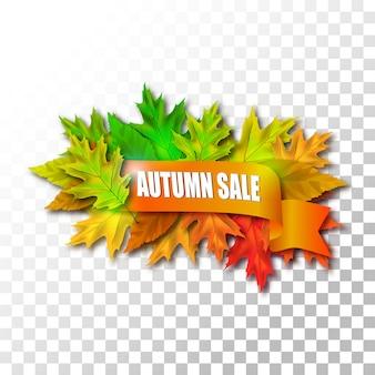 Fogli di vendita di autunno su sfondo trasparente