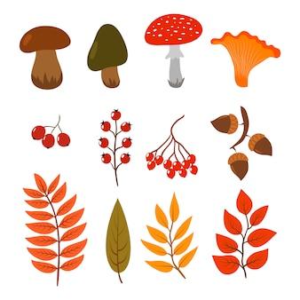Fogli, funghi e bacche di autunno isolati su bianco. illustrazione degli elementi di stile del fumetto della foresta di caduta