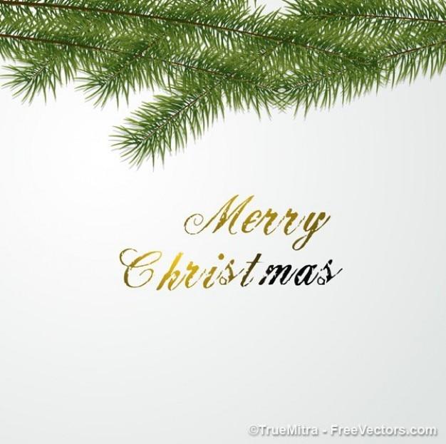 Foglia di abete con merry christmas testo
