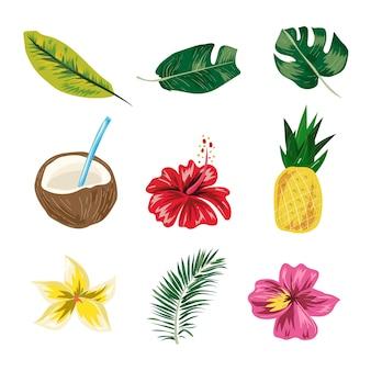 Foglia tropicale di estate, ananas, fiore, vettore di elementi di estate di cocco.