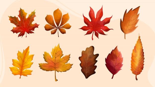 Fogliame dell'acquerello autunno set di elementi