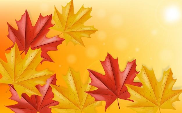 Foglie d'autunno che cade sullo sfondo