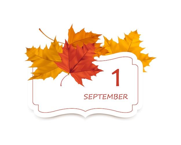 Foglie di acero e carta realistiche di autunno di vettore con il posto per testo.