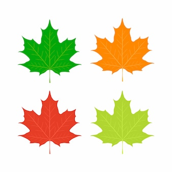 Foglie di acero, simbolo del canada. acero rosso, arancio, giallo