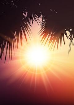 Foglie di palma sullo sfondo estivo