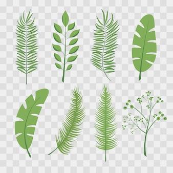 Foglie di palma tropicale e foglie di giungla. set di illustrazioni trendy vettoriali isolato su scacchi trasparenti.