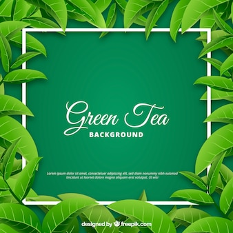 Foglie di tè sfondo con stile realistico