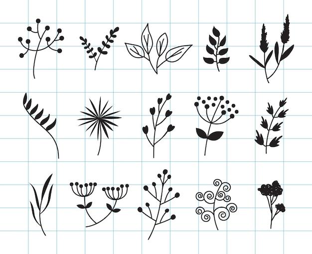 Foglie disegnate a mano e collezione di doodle floreale.