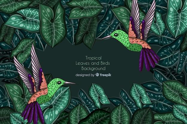 Foglie tropicali e sfondo di colibrì