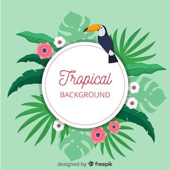Foglie tropicali e sfondo tucan
