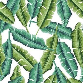 Foglie tropicali senza motivo