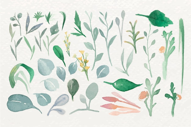 Foglie verdi in acquerello