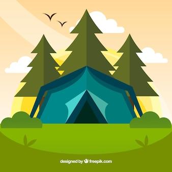 Fondo del campo estivo con tenda blu