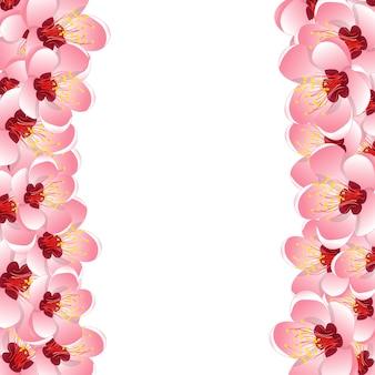 Fondo del confine del fiore del fiore della pesca di momo