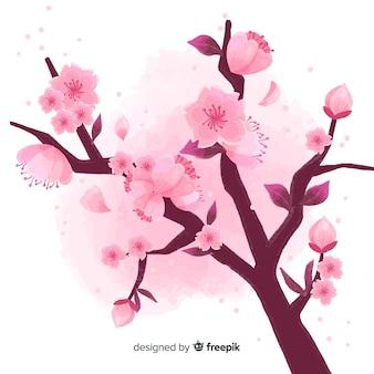 Fondo del ramo del fiore di ciliegia
