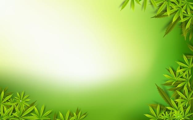 Fondo dell'erba della marijuana della droga di verde della foglia della cannabis