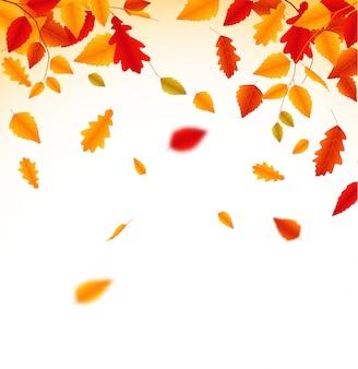 Fondo delle foglie cadenti di autunno