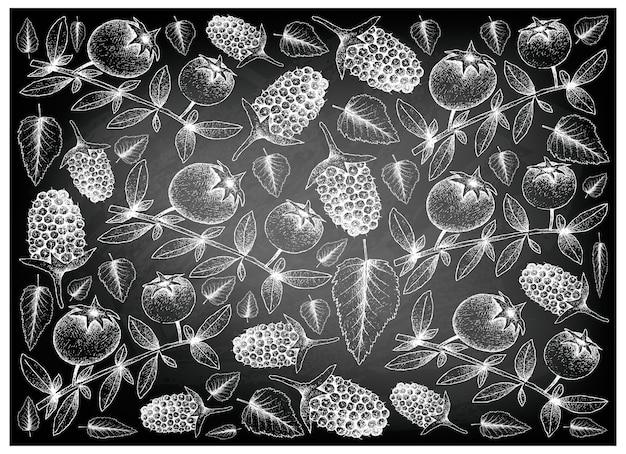 Fondo disegnato a mano di guava cileno