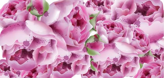 Fondo floreale esotico dell'acquerello delle peonie