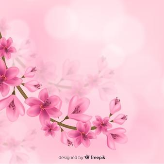 Fondo realistico del ramo del fiore di ciliegia