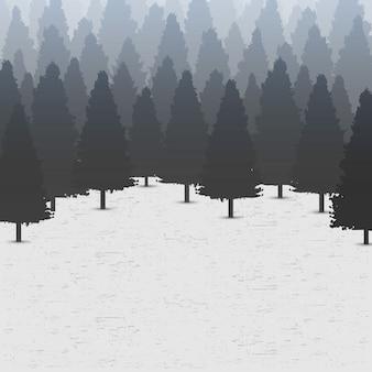 Fondo selvaggio della foresta di pini coniferi.