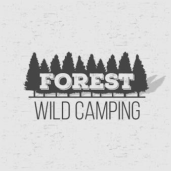 Fondo selvaggio della foresta di pini coniferi