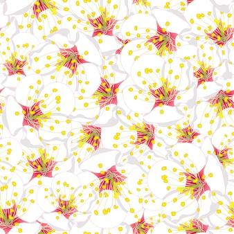 Fondo senza cuciture del fiore bianco del fiore della prugna