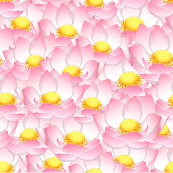 Fondo senza cuciture del loto indiano rosa