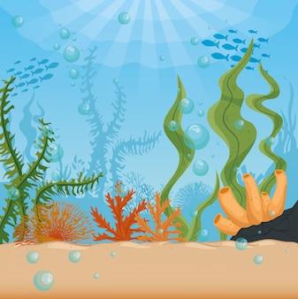 Fondo subacqueo, scogliera sottomarina, oceano con la scena delle alghe marine, concetto del marinaio dell'habitat