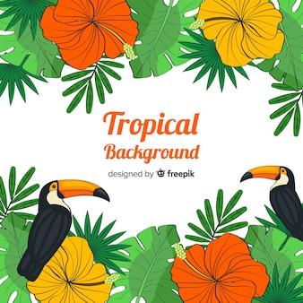 Fondo tropicale disegnato a mano delle piante e degli uccelli