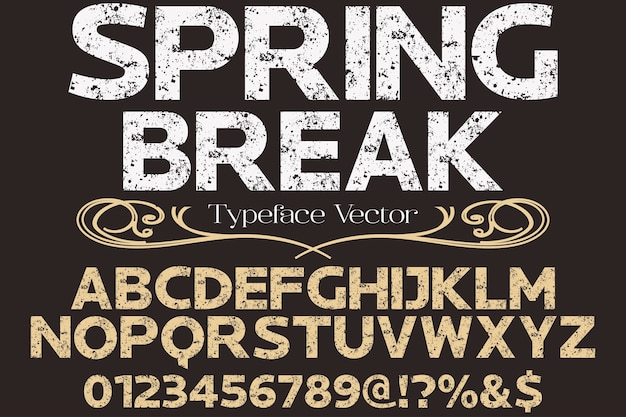 Fonte di disegno di tipografia di vettore handcrafted di carattere