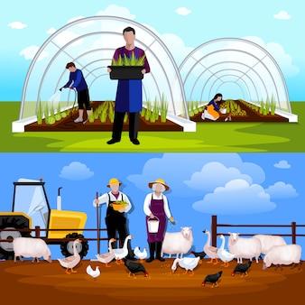 Forcing tunnel di giardinieri e pecore