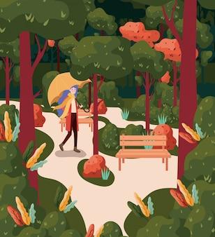 Foresta d'autunno sullo sfondo