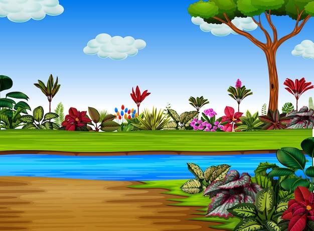 Foresta esotica con il fiume