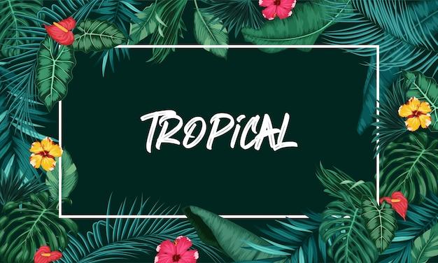 Foresta tropicale con cornice rettangolare su sfondo nero