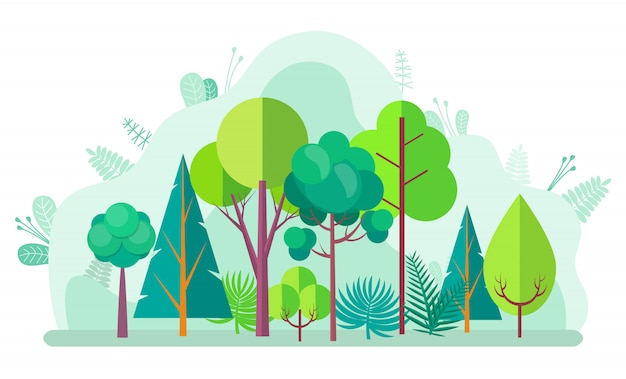 Foresta verde con alberi, abeti e betulle