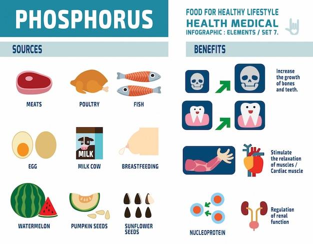Fosforo. elementi di infografica. concetto di assistenza sanitaria. illustrazione di design piatto carino cartone animato.