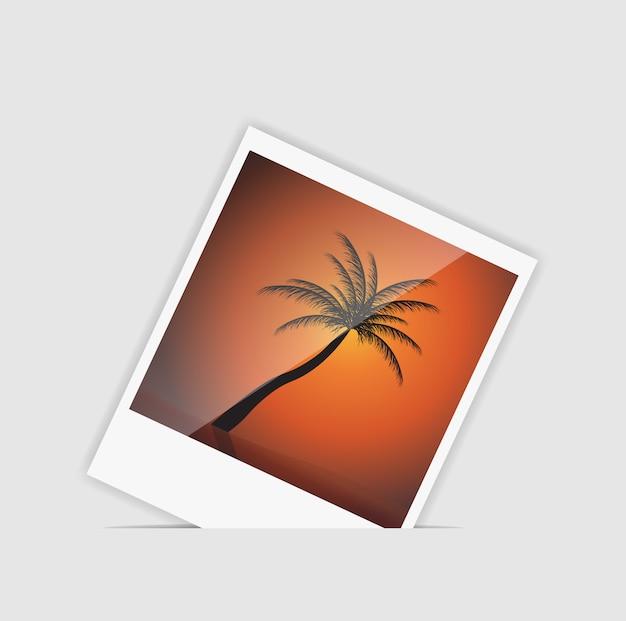 Foto istantanea con l'illustrazione della palma