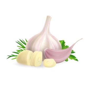 Foto realistica illustrazione della testa e dello spicchio d'aglio tritato. su sfondo bianco clipart della pianta delle spezie ed erbe verdi aneto, prezzemolo