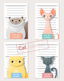Foto segnaletica di gatti carini