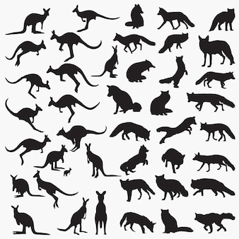 Fox kangaroo silhouettes