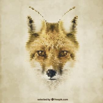 Fox poligonale