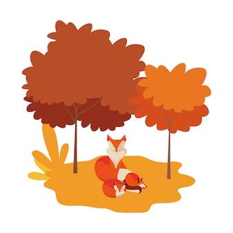 Foxes mammiferi in un paesaggio naturale