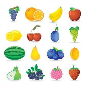 Fruit icon collection