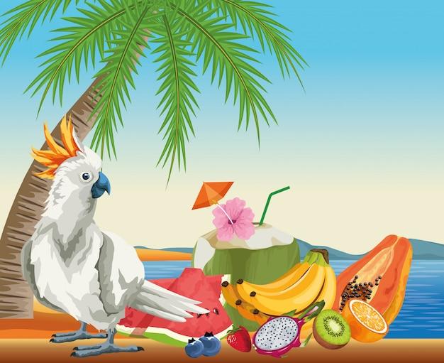 Frutta estiva e spiaggia in stile cartoon