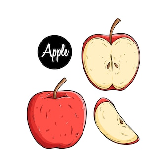 Frutta mela con due tipi di fetta e utilizzando stile disegnato a mano colorata