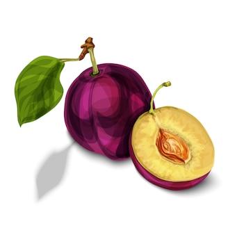 Frutta prugna biologica naturale blu