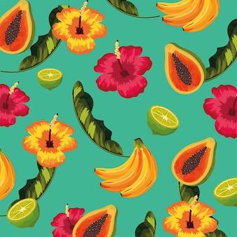 Frutta tropicale e fiori con sfondo di foglie