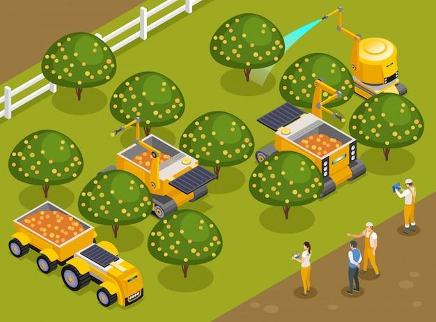 Frutteto di robot agricoli che raccolgono composizione isometrica con macchine automatizzate che raccolgono frutti e innaffiano alberi
