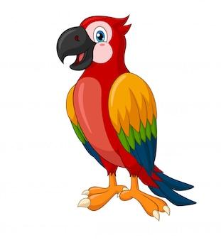 Fumetto adorabile di standing macaw